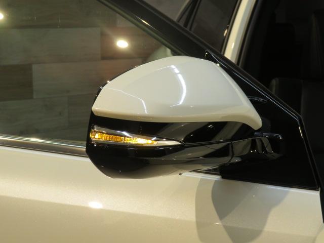 エレガンス 新車未登録 BIGX ソナー AC100V(30枚目)