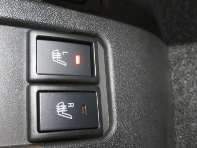 JC セーフティサポート LED 標識認識 LDA(5枚目)