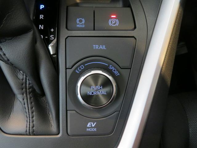 「トヨタ」「RAV4」「SUV・クロカン」「岐阜県」の中古車9
