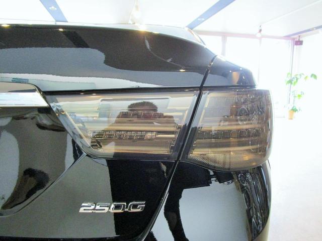 250G 現行仕様 ファイバーHX流れるウィンカー 20AW(8枚目)