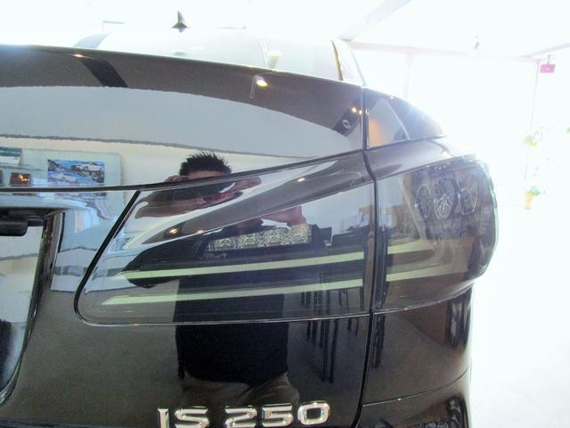 IS250 I スピンドルグリルエアロ ファイバーヘッド(8枚目)