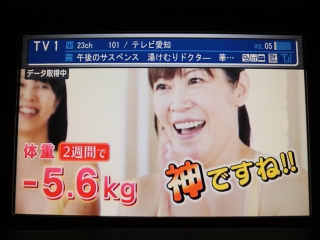 アブソルート 社外19アルミ/HDDナビ/地デジ(16枚目)