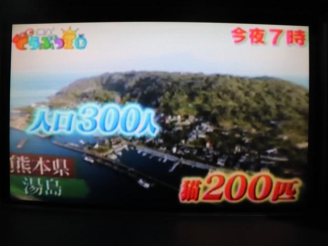 日産フーガ2.5 250GT 純正ナビ/バックカメラ/ETC(16枚目)