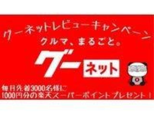 G・Aパッケージ/インテリキー/ETC/外メモリーナビ(38枚目)