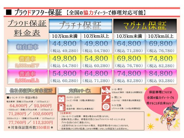 15RX タイプV/純SDナビ/インテリキー/純アルミ(25枚目)