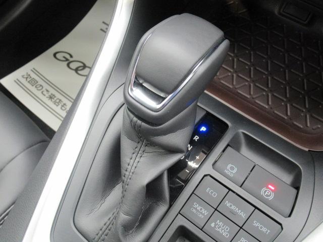 G パノラマサンルーフ バックカメラ レーダークルコン クリアランスソナー ハンドルヒーター シートヒーター LEDヘッドライトライト パワーシート シートヒーター シートメモリー ステアリングスイッチ(25枚目)