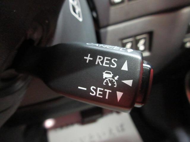 NX300h バージョンL メーカーSD 全方面カメラ 本革(8枚目)