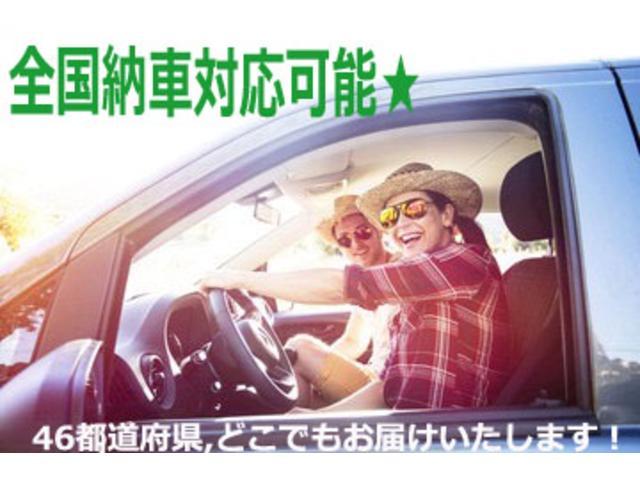 X 社外マフラー ルーフラック 社外AW オレンジコーナーレンズ ナビ TV ETC(56枚目)