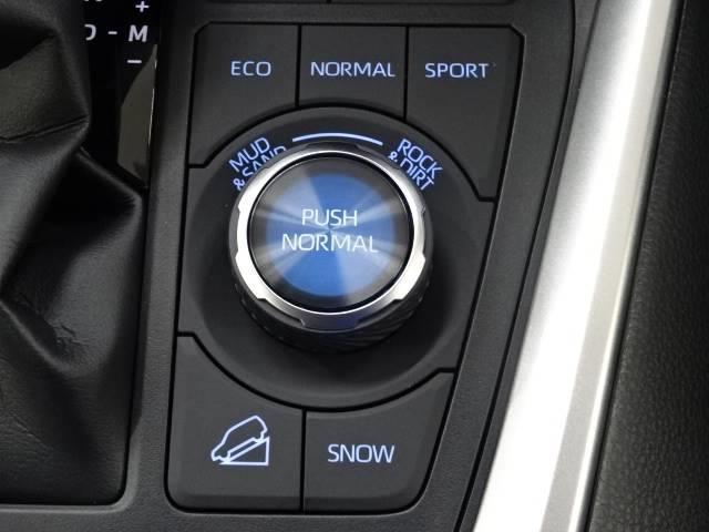 アドベンチャー オフロードパッケージ バックカメラ クリアランスソナー 衝突軽減ブレーキ 追従クルーズコントロール LEDヘッド レーンキープ 合成革シート オートハイビーム 新車未登録 ルーフレール 純正19AW 4WD(8枚目)