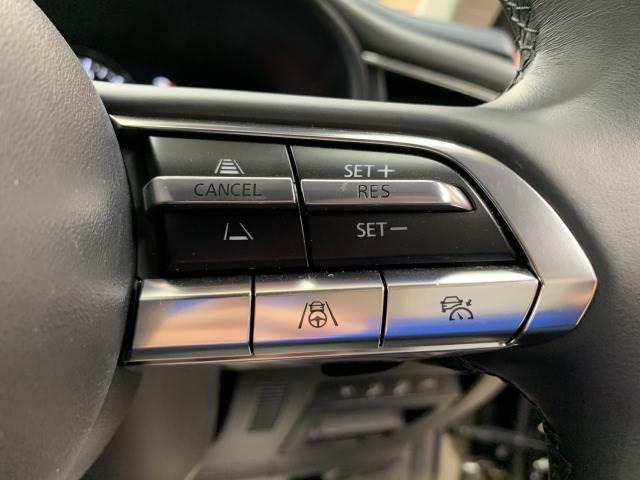 X プロアクティブ ツーリングセレクション 純正ナビ トップビューモニター ビルトインETC パワーシート シートメモリー パワーバックドア 車線逸脱 レーダークルーズ 電動リアゲート パドルシフト スマートキー ブラインドスポットモニター(9枚目)