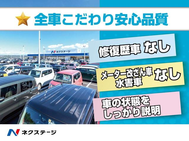 L 純正オーディオ シートヒーター ドアバイザー プライバシーガラス 禁煙車(42枚目)