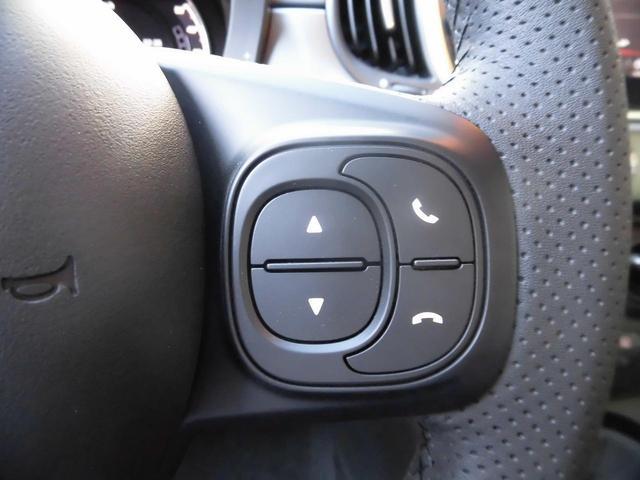 PISTA 1.4 TURBO 160ps 新車並行(19枚目)