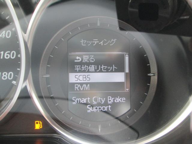 XD Lパッケージ 軽減ブレーキ ナビTV Bカメ レザー(18枚目)