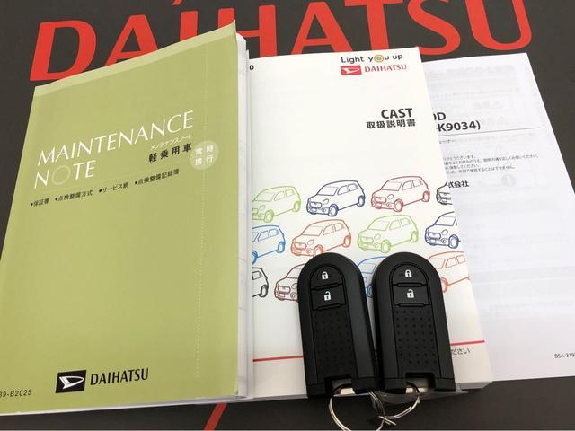 スタイルX リミテッド SAIII 4WD CD(19枚目)