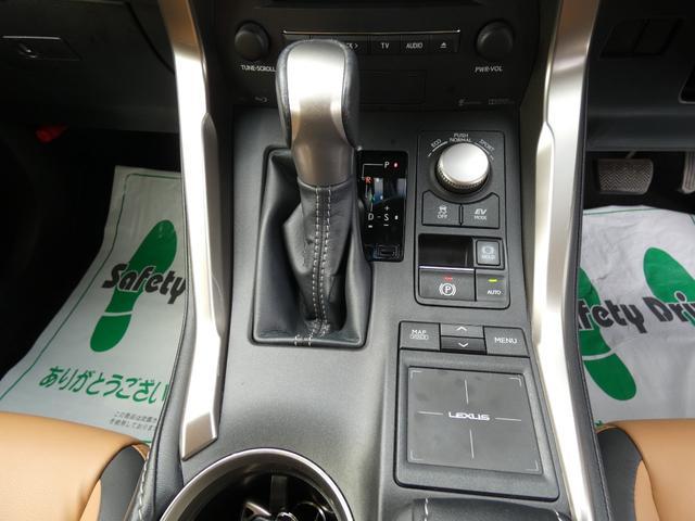NX300h Iパッケージ 4WD(19枚目)