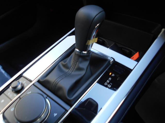 XD プロアクティブ ツーリングセレクション 4WD(14枚目)