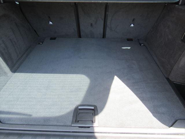 xDrive 35i Mスポーツ(18枚目)