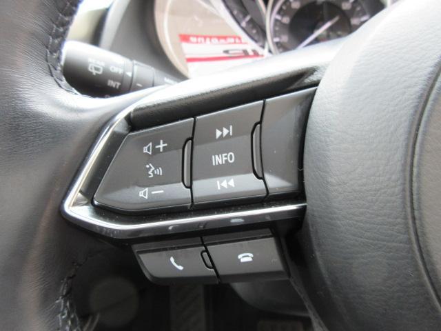 XD Lパッケージ SDナビDTV アイドリングストップ レーダークルーズコントロール ETC 黒革シート クリアランスソナー ブラインドスポットモニター シートヒーター(26枚目)
