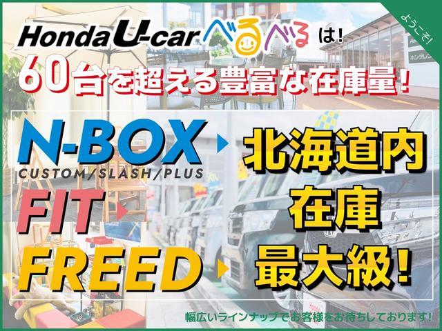 F HondaSENSING ナビカメラ(22枚目)