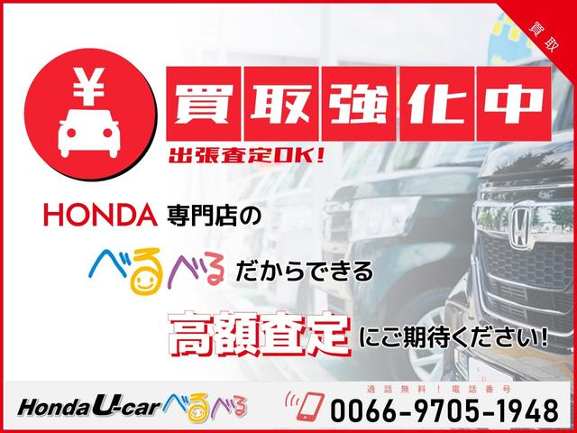 F HondaSENSING ナビカメラ(24枚目)
