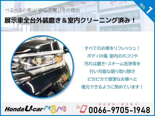 F HondaSENSING ナビカメラ(25枚目)