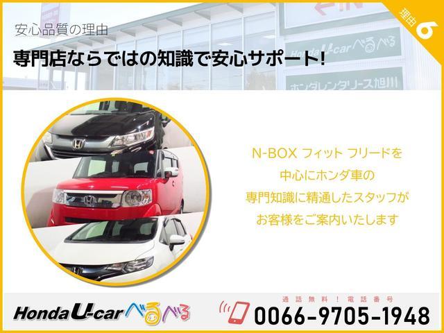 F HondaSENSING ナビカメラ(30枚目)