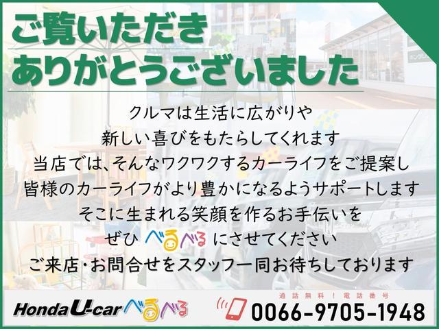 F HondaSENSING ナビカメラ(47枚目)