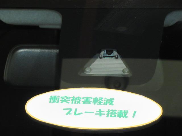 シルク SAII TV(4枚目)