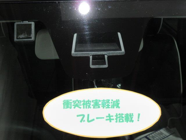 XG 4WD TV(14枚目)