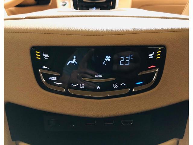 プラチナム 新車並行 未登録 10速AT リアエンター(13枚目)