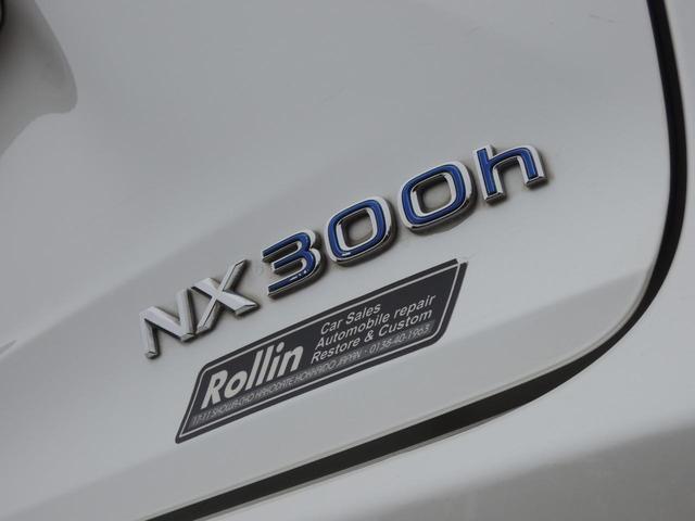 NX300h バージョンL(10枚目)