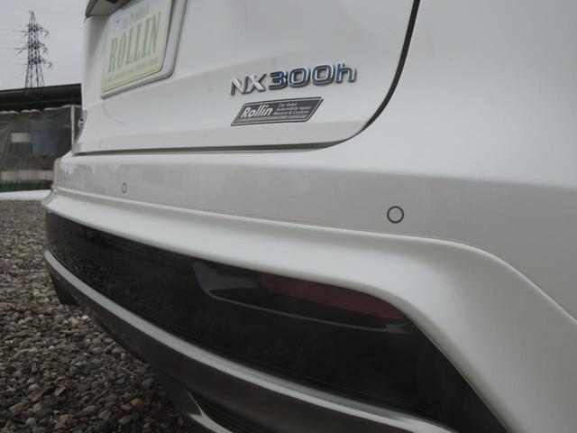NX300h バージョンL(17枚目)