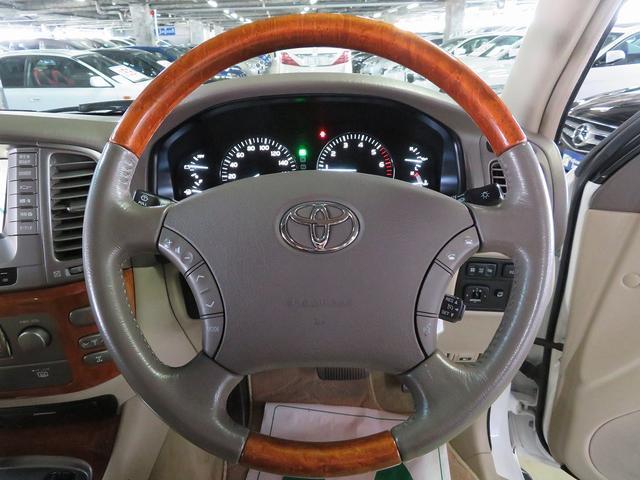 シグナス 4WD 本革 外22AW クールBOX 本州仕入(18枚目)