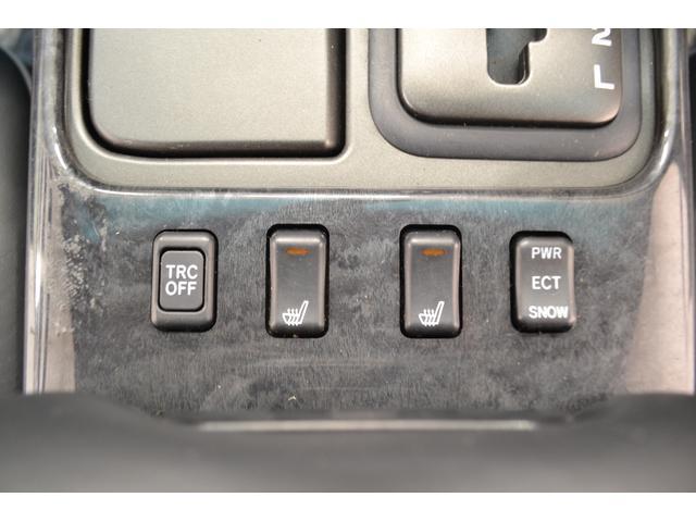 V300ベルテックスエディション(16枚目)