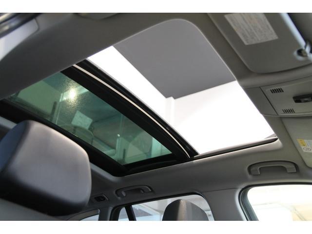 xDrive25i黒革シートヒーターBカメラ地デジSR(19枚目)