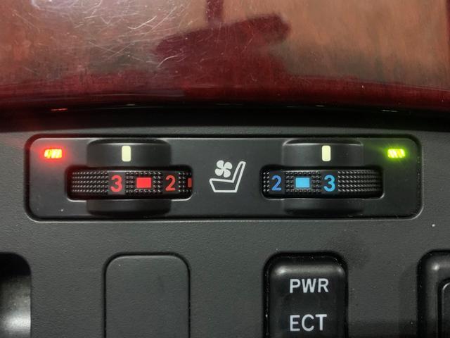 GS350 本州仕入 寒冷地仕様 スピンドルグリル 20AW(18枚目)