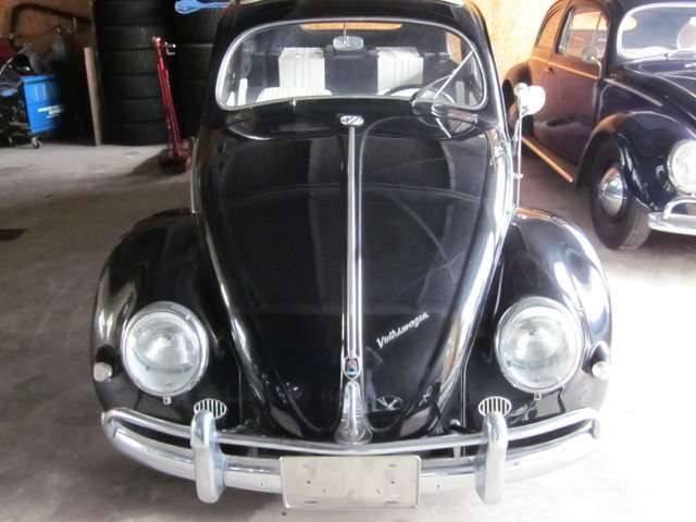 「フォルクスワーゲン」「VW ビートル」「クーペ」「北海道」の中古車2