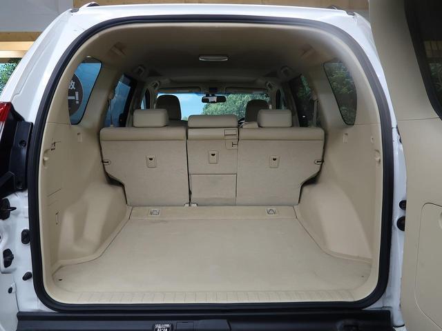 TX Lパッケージ 4WD サンルーフ サイバーナビ(11枚目)