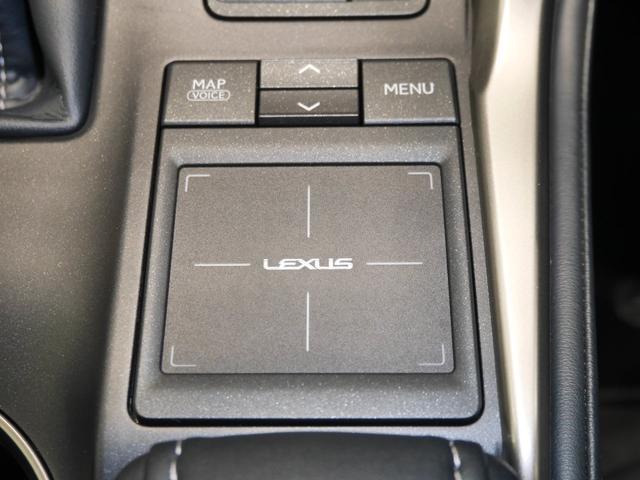 NX200t Iパッケージ AWD CPO ムーンR 寒冷地(15枚目)