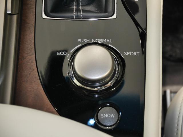 GS350 Iパッケージ 三眼LED オートマチックハイビーム クリソナ BSM 純正リモスタ 寒冷地仕様 CPO認定中古車(17枚目)