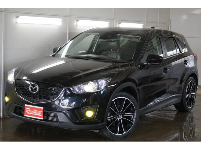 XD Lパケ・4WD・寒冷地・本州仕入・デカナビ・ローダウン(17枚目)