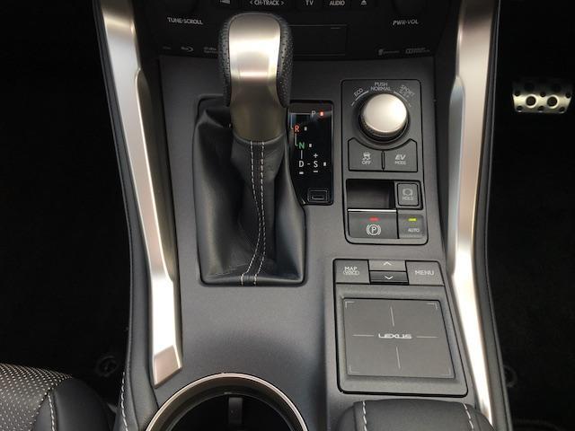 NX300h Fスポーツ 4WD サンルーフ TRDマフラー(10枚目)