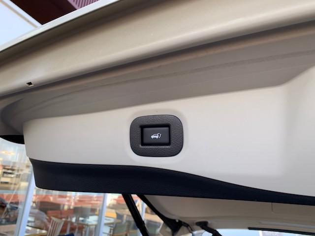 20X ストラーダSDナビ レーダーブレーキ パワーバックドア カプロンシート コムテックエンジンスターター コーナーセンサー バックカメラ ステアリングスイッチ 革巻きステアリング LEDヘッドライト(50枚目)