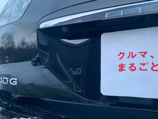 240G プレミアムLパッケージ 4WD ローダウン(17枚目)