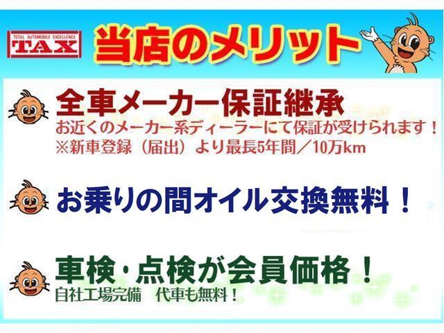 アクティバG VS SAIII ナビTV 届出済未使用車(6枚目)