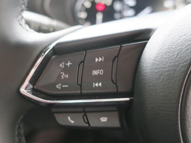 XD エクスクルーシブ モード 4WD Mナビ 地デジ 19AW(26枚目)