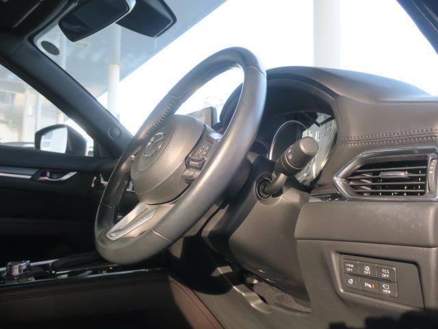 XD プロアクティブ 4WD Mナビ 地デジ ETC 19AW(22枚目)