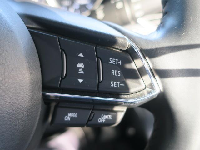 XD プロアクティブ 4WD Mナビ 地デジ ETC 19AW(32枚目)