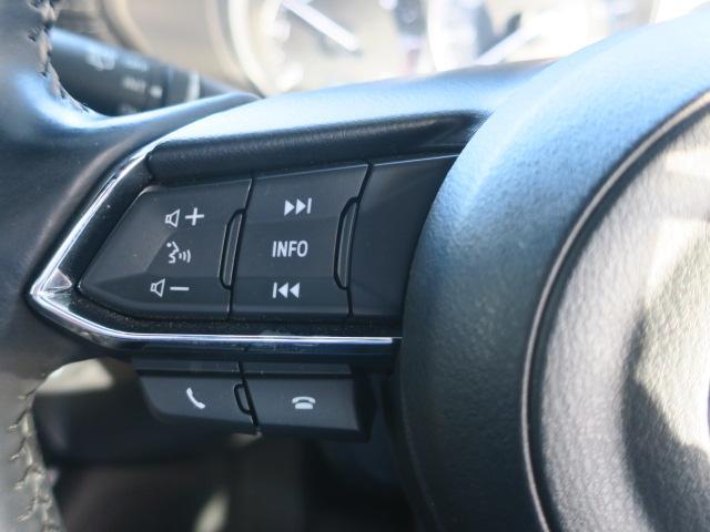 XD プロアクティブ 4WD Mナビ 地デジ ETC 19AW(34枚目)