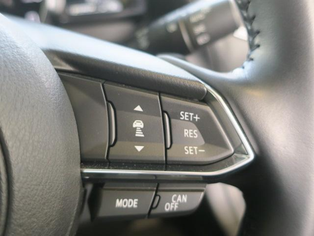 15S プロアクティブ 4WD Mナビ 地デジ Rクルーズ 16AW(24枚目)
